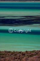 Kitesurfing_Paradise,Kiteboarding_Shark_